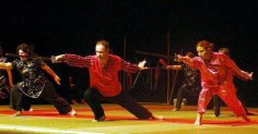 20 ans ACC Kung Fu 25 03 2006 029 B
